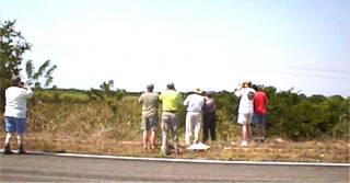 Birding the airport road